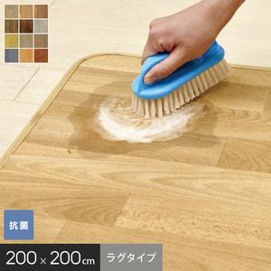 ゴシゴシ洗えるカーペット アスワン クリーン ロボ ラグサイズ 200×200cm
