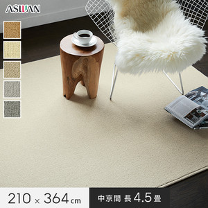 ■防ダニ・防音■アスワン YESカーペット 【アスフェリーチェ】 中京間 長4.5畳 210×364cm