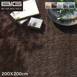【抗アレルゲン】スミノエ BIG ネオグラス 200X200cm