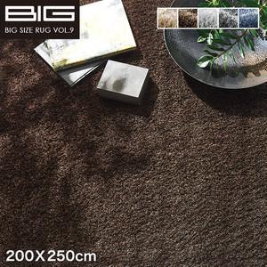 【抗アレルゲン】スミノエ BIG ネオグラス 200X250cm