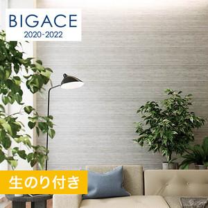 【のり付き壁紙】シンコール BIGACE コンクリート・メタル調 BA5136
