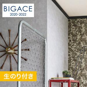 【のり付き壁紙】シンコール BIGACE コンクリート・メタル調 BA5205