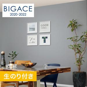 【のり付き壁紙】シンコール BIGACE 織物調 トルアレル BA5506