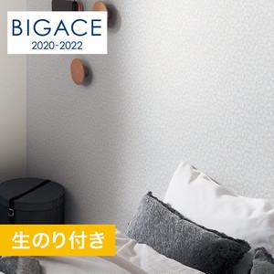 【のり付き壁紙】シンコール BIGACE クール調 トルアレル BA5510