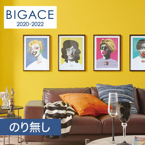 【のり無し壁紙】シンコール BIGACE 塗り壁・石目調 リフクリーン BA5038