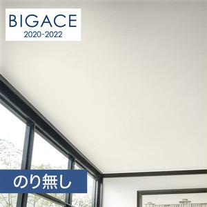 【のり無し壁紙】シンコール BIGACE 塗り壁・石目調 BA5528
