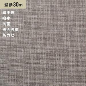 シンプルパック30m (生のり付きスリット壁紙のみ) サンゲツ SP2862 (旧SP9543)