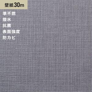 シンプルパック30m (生のり付きスリット壁紙のみ) サンゲツ SP2863 (旧SP9544)