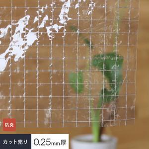【カット販売】 糸入り透明 ビニールカーテン生地 防炎ターポリン RVC-25